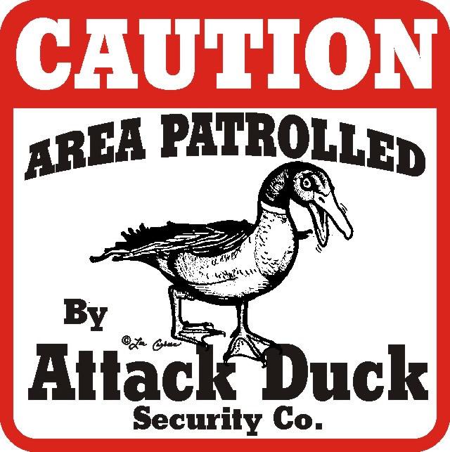 attack20duck_attack_640.jpg