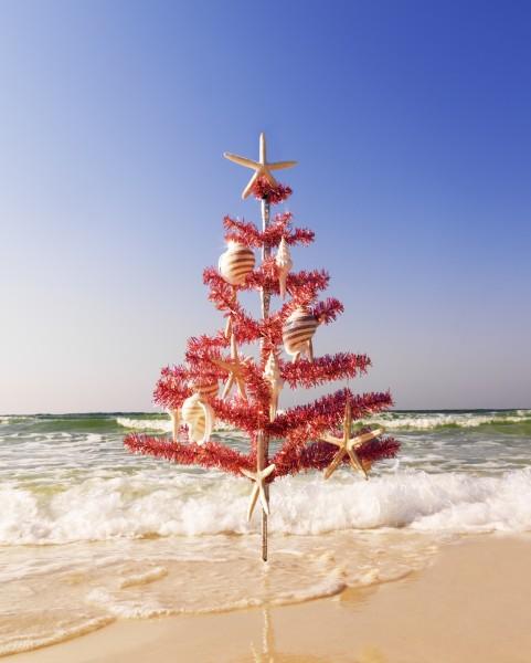 oceanchristmastree-481x600