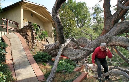 Santa Ana winds: Low bridge