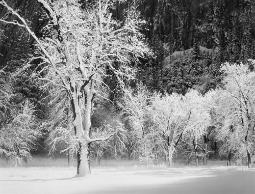 yos snow